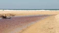 Il lago di tee tree oil, dietro a Suffolk beach (foto: Anna Luciani)