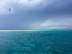 Michaelmas Reef (foto: Anna Luciani)