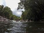Mossman Gorge (foto: Anna Luciani)