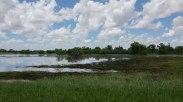 deserto allagato (foto: Anna Luciani)