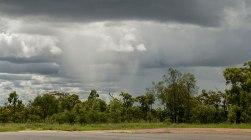 scrosci di pioggia (foto: Anna Luciani)