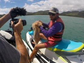 Andrew con una Yellow Jellyfish. Jet Ski Hire Magnetic Island. (foto: Anna Luciani)