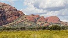 Kata Tjuta. Per le forti e abbondanti piogge l'erba colora di verde le pareti rocciose (foto: Anna Luciani)