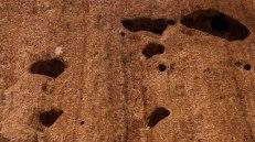 alcuni buchi, vere e proprie caverne, lungo le pareti del Monte Uluru.(foto: Anna Luciani)