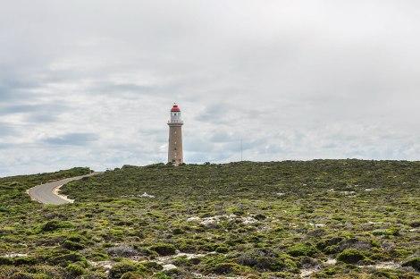 kangaroo-island-152