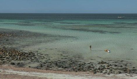 kangaroo-island-298
