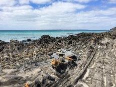 La spiaggia di Penneshaw (foto: Anna Luciani)