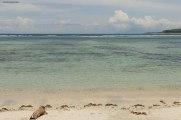 le spiagge a nord dell'isola (foto: Anna Luciani)