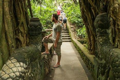 in giro per il Sacred Monkey Forest Sanctuary, assaliti dalle scimmie (foto: Anna Luciani)