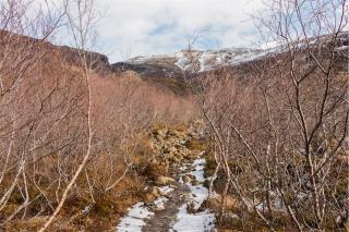 islanda 2018-1128