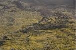 i campi di lava provocati dall'eruzione del 1973 detti eldfellsharun (foto: Anna Luciani)