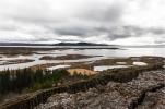 Il Þingvellir (Thingviller) National PArk, gola di Almannagjá (foto: Anna Luciani)