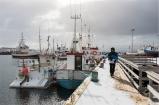Húsavík, il porto (foto: Anna Luciani)