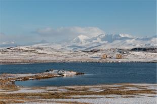 ai piedi del monte Helgafell (foto: Anna Luciani)