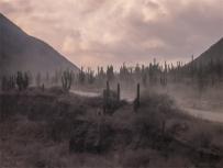 paesaggi della Puna Argentina, ottobre 2005 (foto: Anna Luciani)