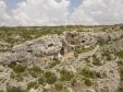 Grotte neolitiche e chiese rupestri (foto: Simone Chiesa)